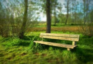 Image of outdoor bench, you can protect it using the Best Paint for Outdoor Wood Furniture