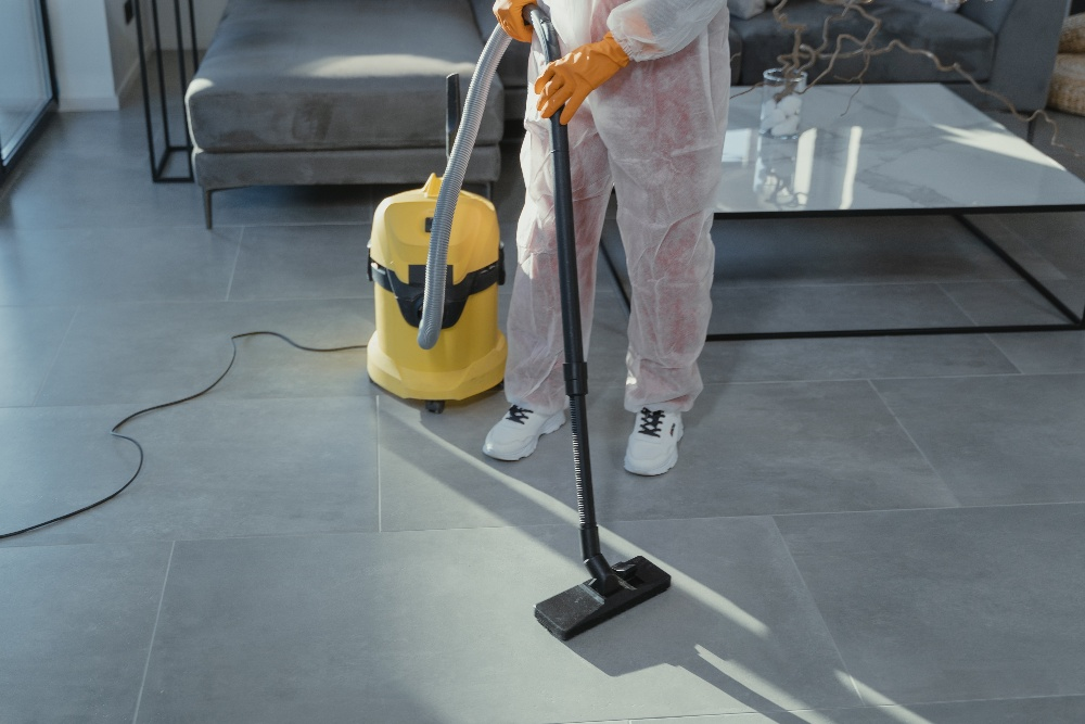 the Best Vacuum Cleaners for Hardwood Floors and Area Rugs in use